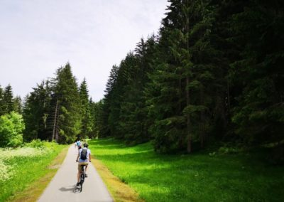 Dravska kolesarska pot, 2019